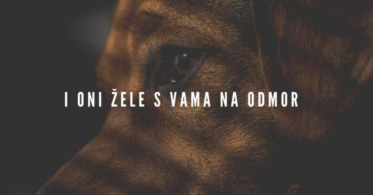 Sa psima