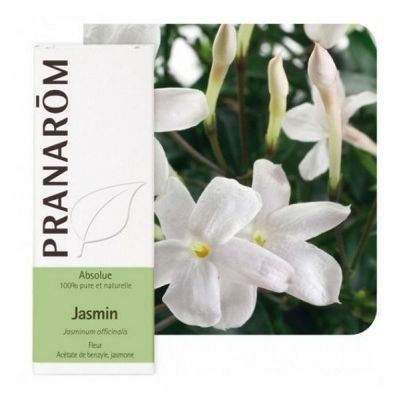 JASMIN APSOLUT 5ML PRANAROM