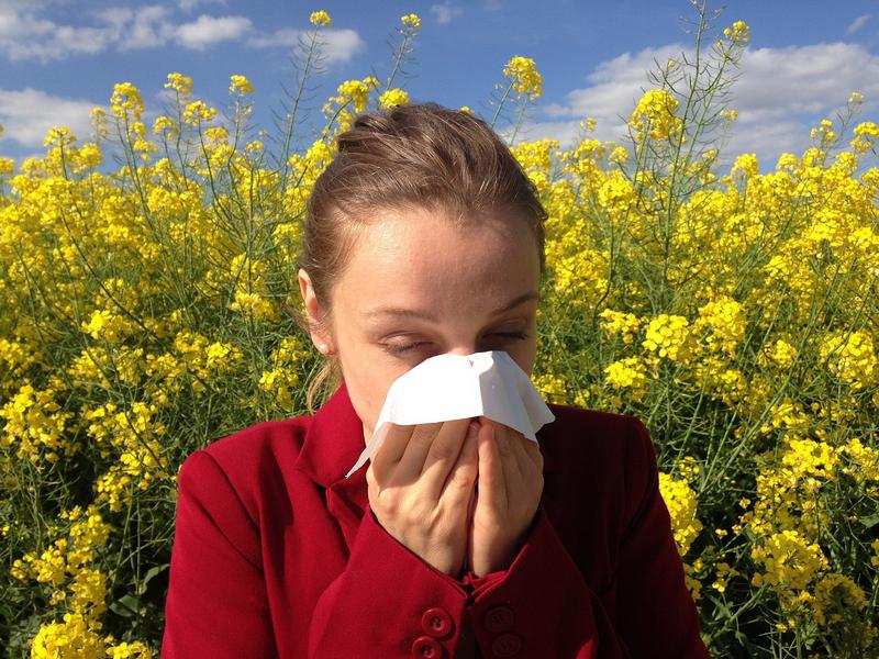 Prirodom protiv alergija